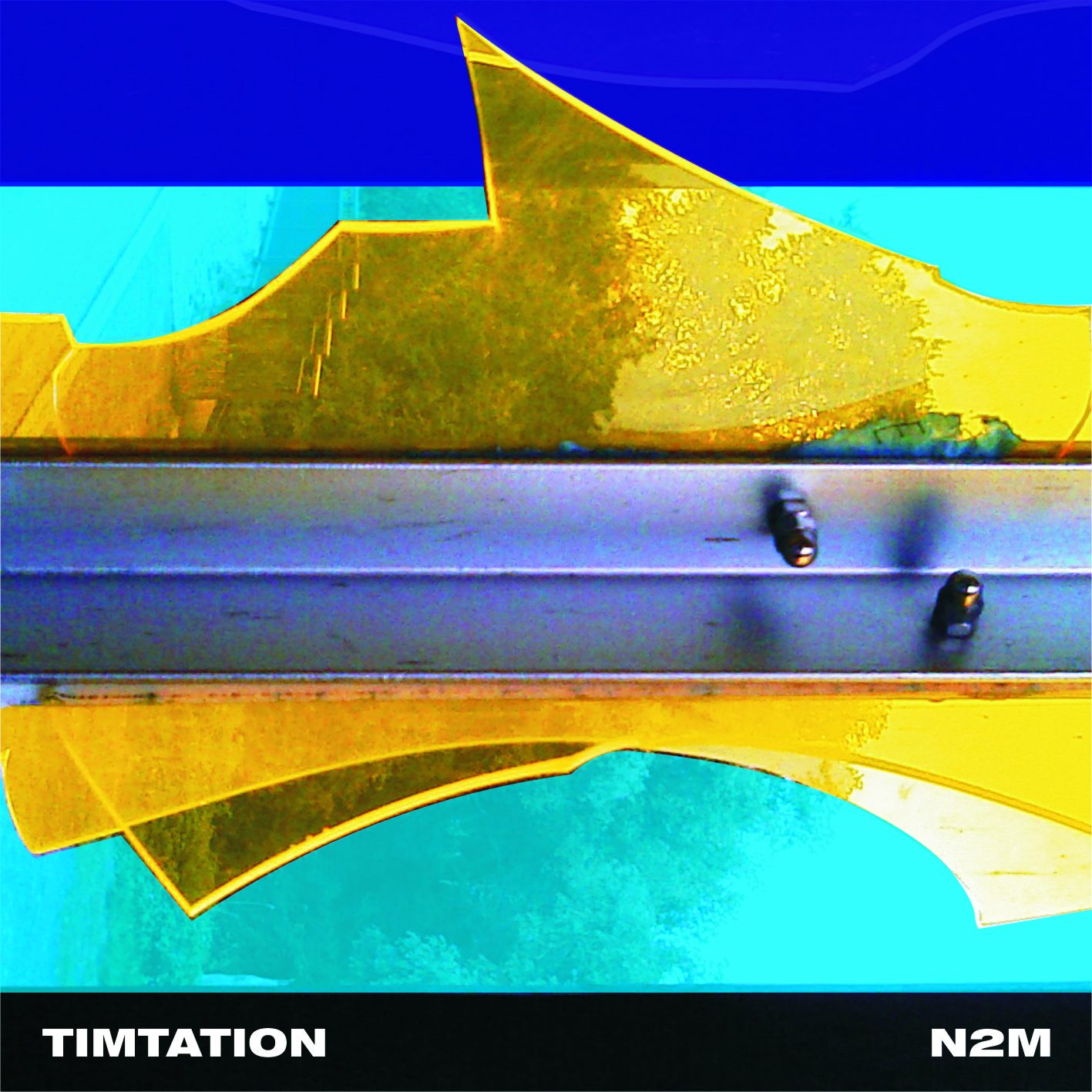 Timtation - N2M Cover