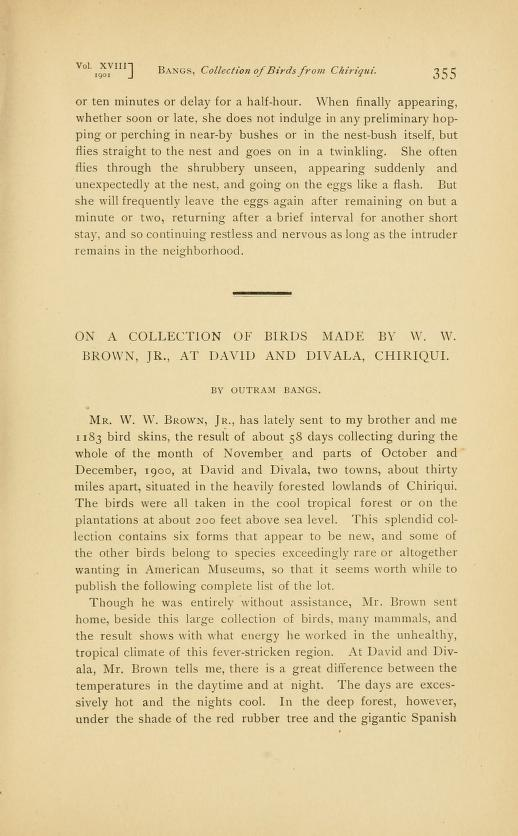 On a Collection of Birds Made by W. W. Brown, Jr., at David and Divala, Chiriqui